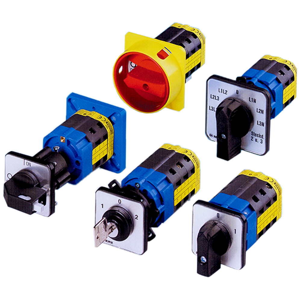 Merz Rotary CAM Switches | Springer Controls Company ®